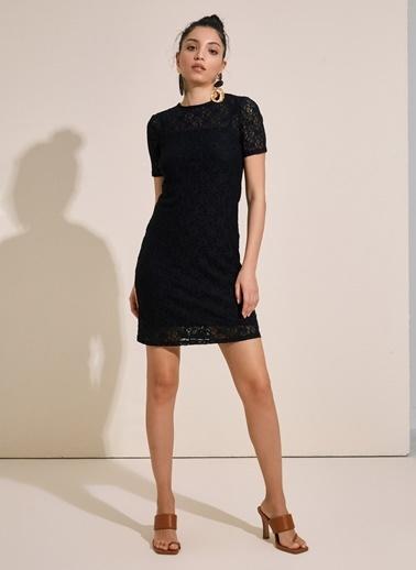 Styletag Dantel Elbise Siyah